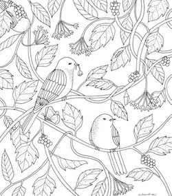 Nature Sings Colourart - adult colouring books by Emila Yusof
