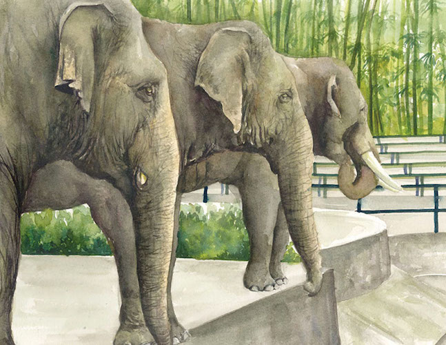 Siti the Elephant by Rossiti Aishah Rashidi, illustrated by Farah Ashiela Samsuri, published by Oyez!Books
