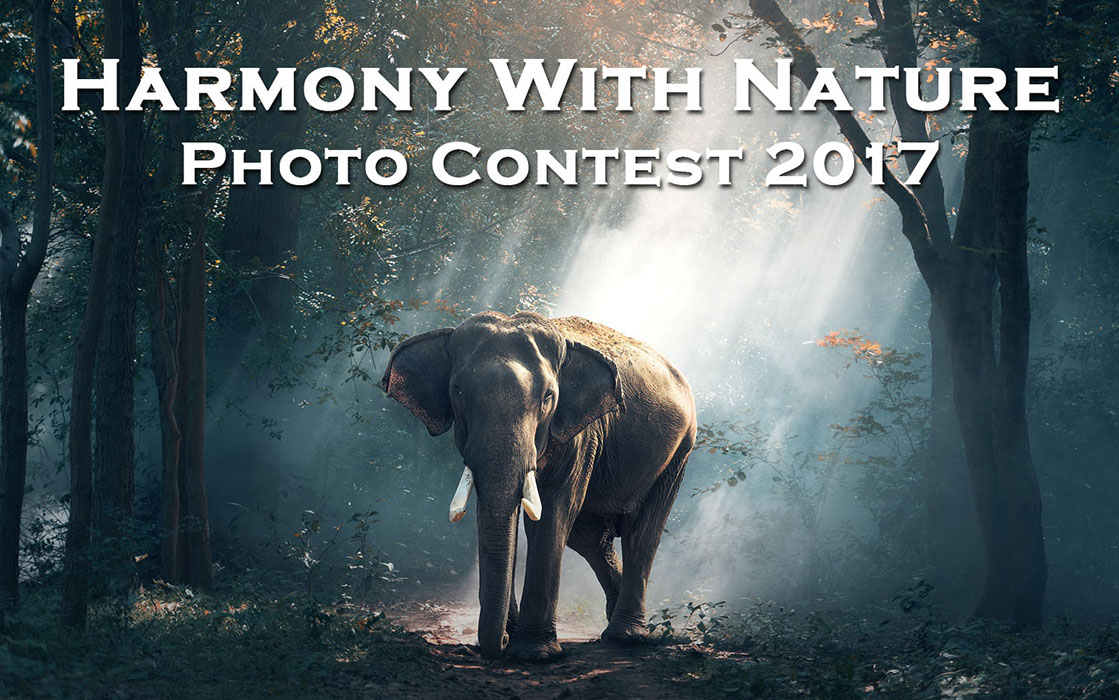 Harmony with Nature Photo Contest 2017 by Oyez!Books