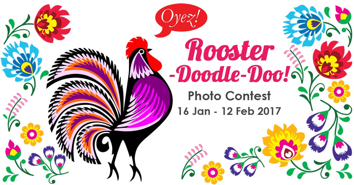 Rooster-Doodle-Doo! Photo Contest 2017 by Oyez!Books